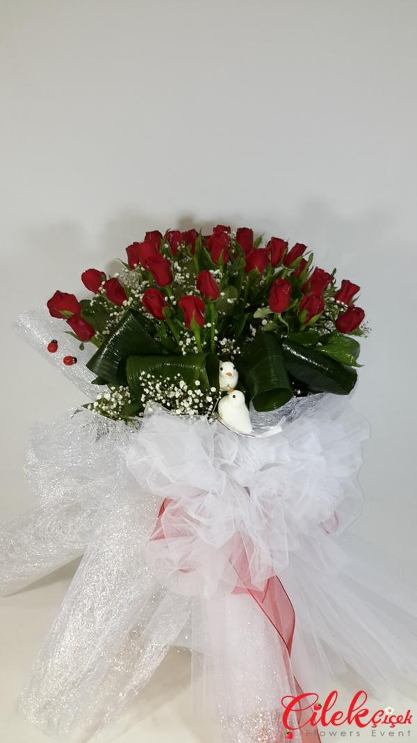 Kırmızı Güller'im