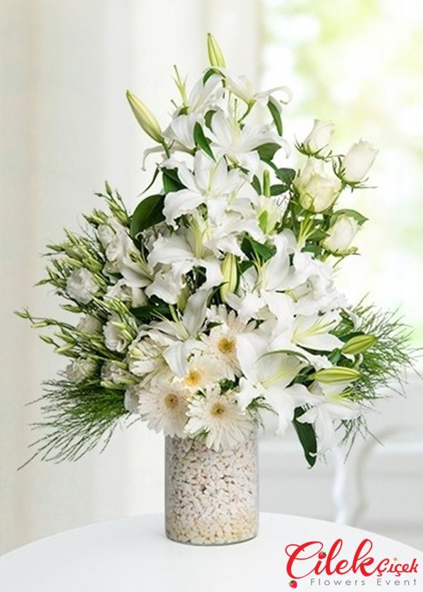 Lilyum,Güller ve Mevsim çiçekleri